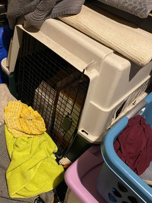 Large dog kennel! Great price. My dog doesn't use it... for Sale in Orlando, FL