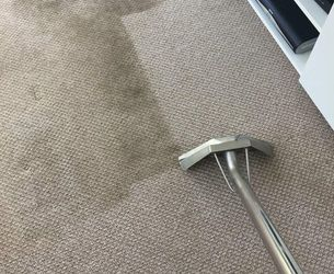 Carpet Cleaner for Sale in Alafaya,  FL