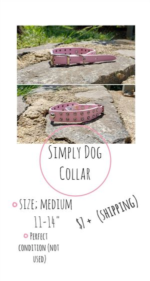 Simply Dog Collar for Sale in Alexandria, VA