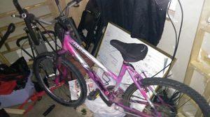 Raleigh girls Mt bike for Sale in Denver, CO
