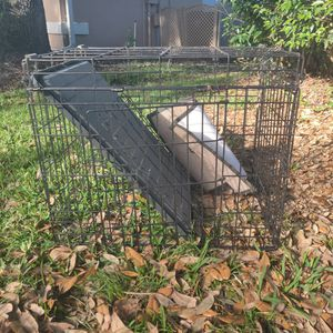 Small Animal Metal Cage (Aprx 3x3x2) for Sale in Brandon, FL