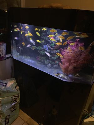 Acrylic 75 gallon aquarium tank with built in filtration firm price for Sale in Norridge, IL
