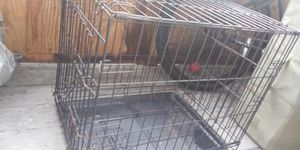 Dog crate - chihuahua size for Sale in Bradenton, FL