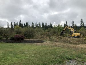 Clearing for Sale in Roy, WA