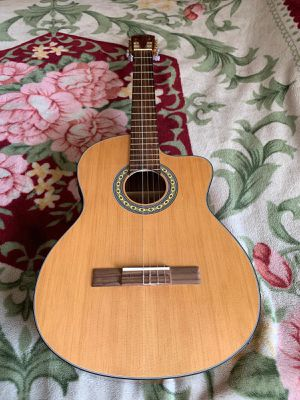 Fever Acoustic electric guitar for Sale in Los Angeles, CA