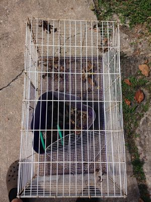 Cage for birds, and other small animal pets for Sale in Friendswood, TX