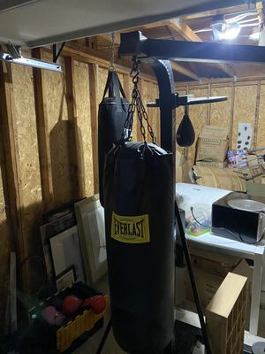 Two heavy bags one speed bag for Sale in Tukwila, WA