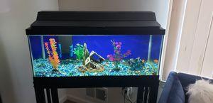 Tank fish 🐟 for Sale in Dearborn, MI