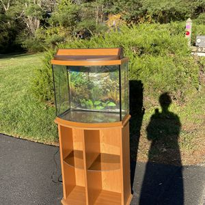 Fish Tank and cabinet for Sale in Oakton, VA