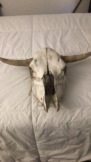 Bull head decor for Sale in Diamond Bar, CA