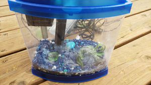 1 gallon beta tank aquarium for Sale in Boring, OR