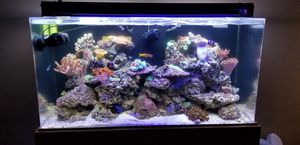 90 gallon saltwater tank for Sale in San Diego, CA