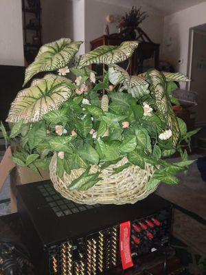 **BEAUTIFUL** Faux Plant for Sale in Mesa, AZ