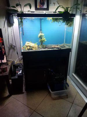 65 gallon aquarium for Sale in Glendale, AZ