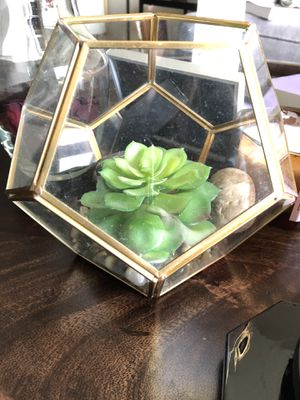 Succulent Planter for Sale in Rockville, MD