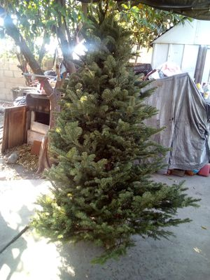Nobel fir Xmas 80$ any size for Sale in Irwindale, CA