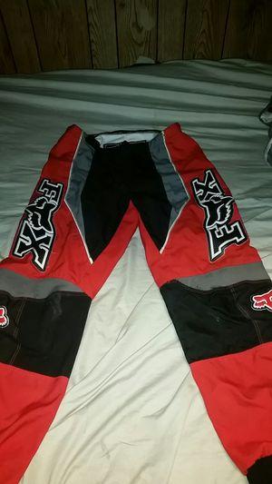 Fox riding pants for Sale in Payson, AZ