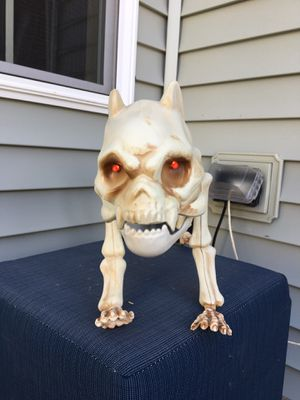 Halloween skeleton dog for Sale in Naperville, IL