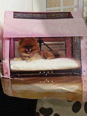 Foldable dog house for Sale in South Gate, CA