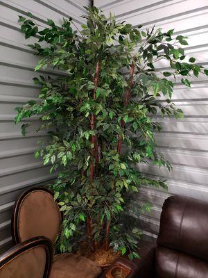 Fake Plant decor for Sale in Richmond, TX