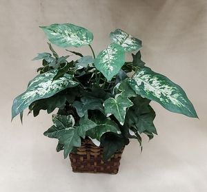 Artificial Decor Plant for Sale in Goodyear, AZ