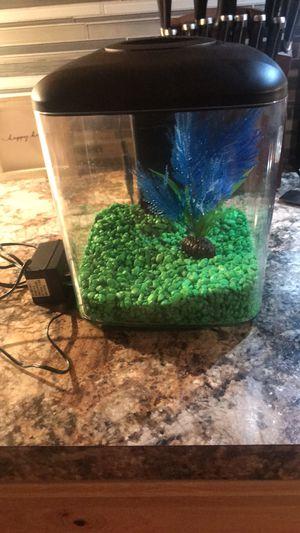 Betta Fish Tank for Sale in Wichita, KS