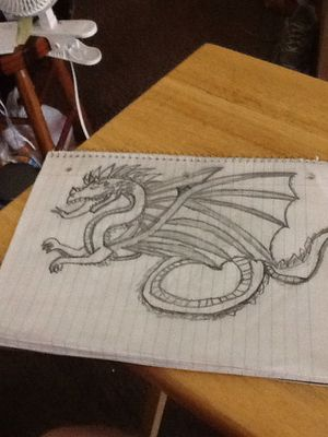A drawing of a dragon for Sale in Missoula, MT