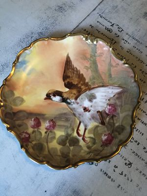Antique Hand Painted Limoges Bird Plate Wall Art for Sale in Tampa, FL