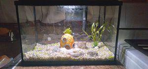 5.5 gallon fish tank for Sale in Paterson, NJ