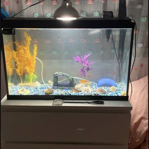 Fish tank 30 gallons for Sale in Vancouver, WA