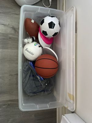 Assorted Sports Balls, 3 Frisbees, Ball Pump and 3 Foam Seatees for Sale in Ithaca, NY