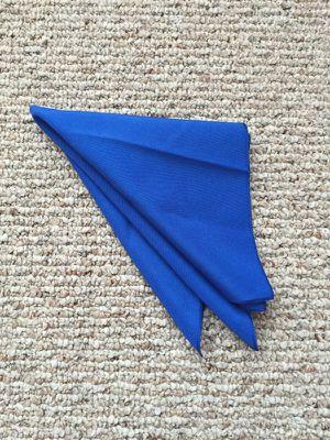 Royal Blue Polyester Cloth Napkins. 17 inch for Sale in Harrisonburg, VA
