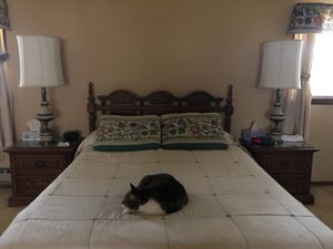 Queen Bed set for Sale in Newtown, PA