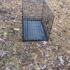 Dog Crate for Sale in Hopkins, SC