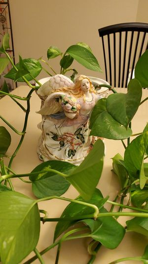 Vine Plant with Antique Glass Angel Pot for Sale in Colorado Springs, CO