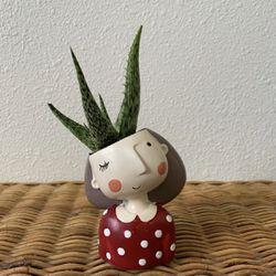 """Aloe w/ 2"""" Resin Girl Planter for Sale in Golden,  CO"""