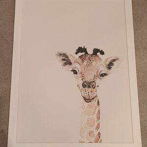 Giraffe Canvas Photo for Sale in Newburgh, IN