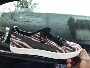 Puma for Sale in Garfield Heights, OH