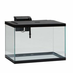 20 Gallon Tank $60 / 10 Gallon $10 for Sale in Gretna, VA
