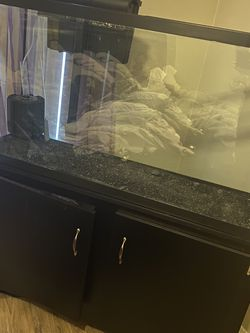 100 Gallon Fish Tank for Sale in Phoenix,  AZ