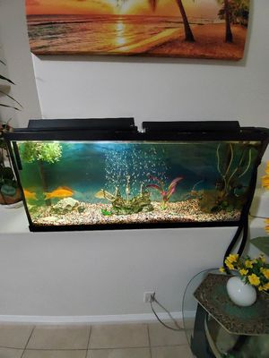 Fish tank( 60 gallons) for Sale in Las Vegas, NV
