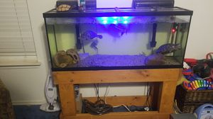 80 gallon fish tank with equipment for Sale in Round Rock, TX