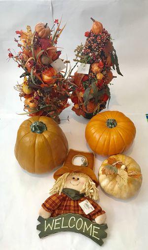 Fall outdoor/indoor decorations for Sale in Alexandria, VA