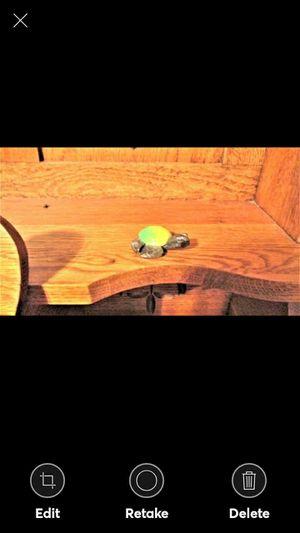 Mini Marble Turtle for Sale in Lynchburg, VA