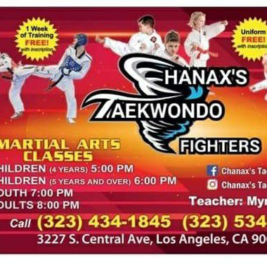 Chanax's taekwondo fighters
