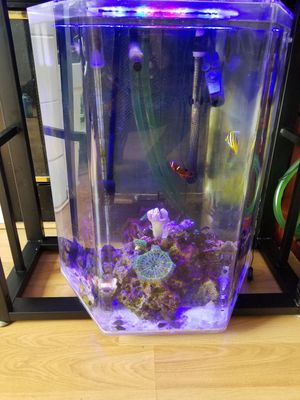 Fish tank complete setup for Sale in Elk Grove, CA