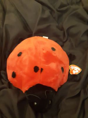 Lucky the ladybug ty beanie babie for Sale in League City, TX