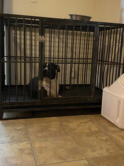 Metal Dog Cage for Sale in Ocala,  FL