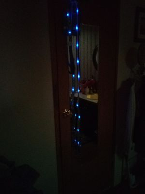 Lighted dog leash 6ft for Sale in Red Bud, IL