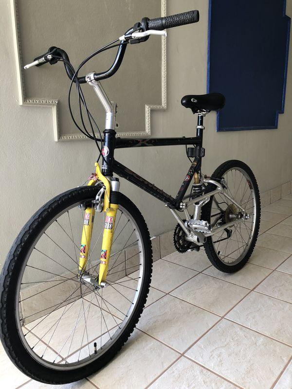 Schwinn 19six mountain bike